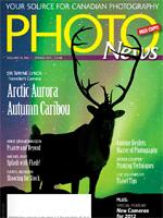 Magazine vol.21 no.1